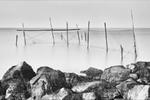 Stellendam-Haringvlietsluizen - Fuiken