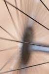 Een spaak in het wiel steken