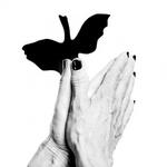 Handschaduwen