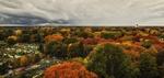 Het Leijpark in de herfst