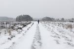 De loper in de sneeuw