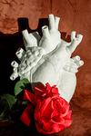 Hart met rode roos, liefdesgedicht
